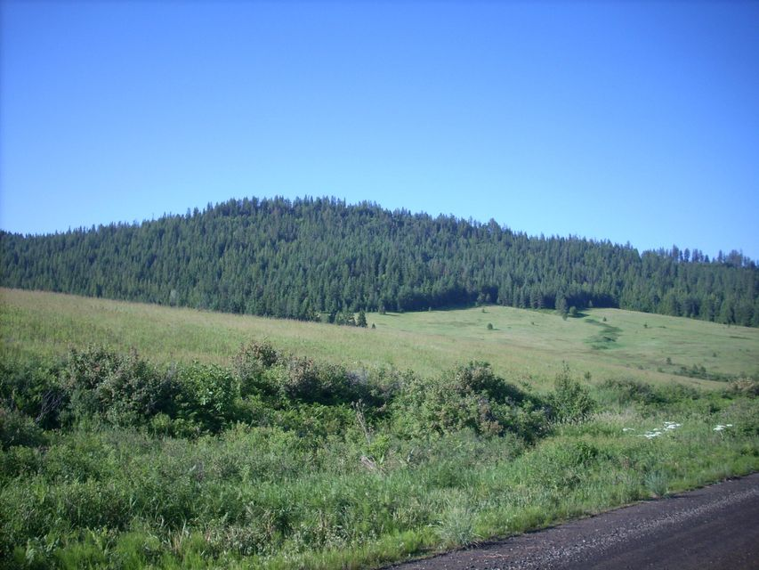Land for Sale at 107acres Windfall Pass 107acres Windfall Pass Plummer, Idaho 83851 United States