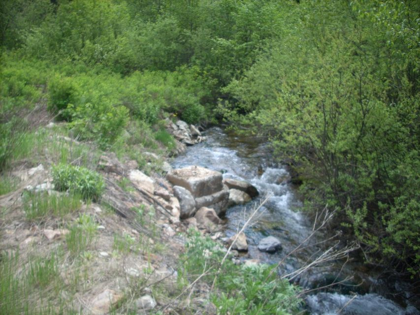 Land for Sale at NKA Placer Creek Road NKA Placer Creek Road Wallace, Idaho 83873 United States
