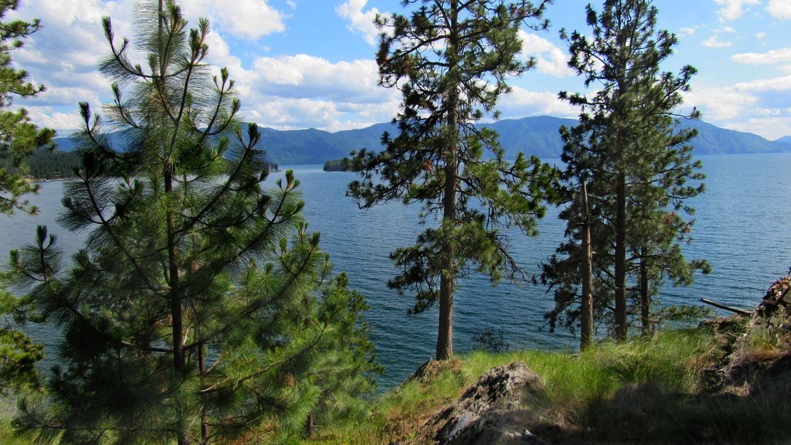 Additional photo for property listing at NNA Red Fir Street NNA Red Fir Street Hope, Idaho 83836 United States