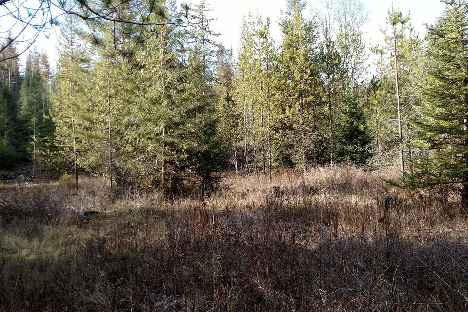 Lot 2 20 Acre Slippery Slope Trail, Priest River, ID 83856