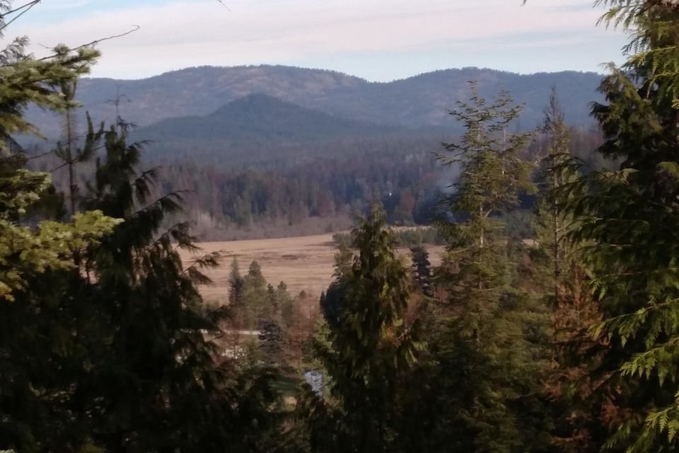 Lot 2&3 47 Acre Slippery Slope Trail, Priest River, ID 83856