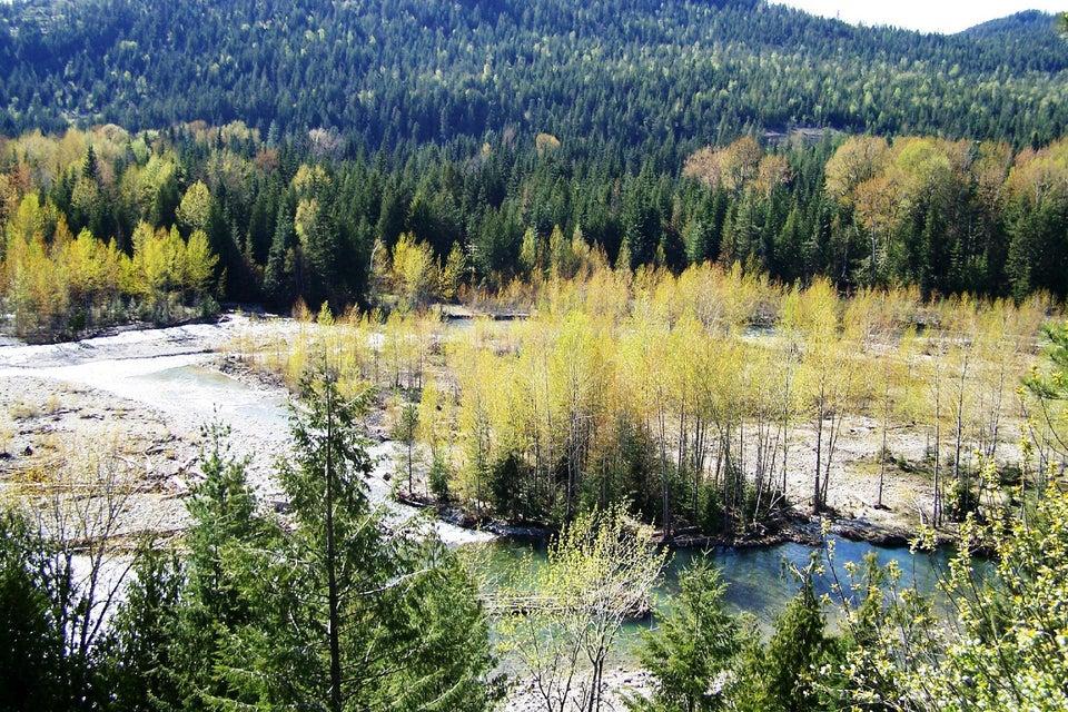 8 Cascade Creek Rd, Clark Fork, ID 83811