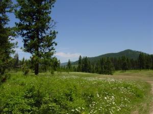 NNA Tyson Creek, Santa, ID 83866
