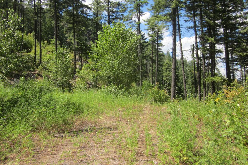 Lot 1C Summit Drive, Sandpoint, ID 83864