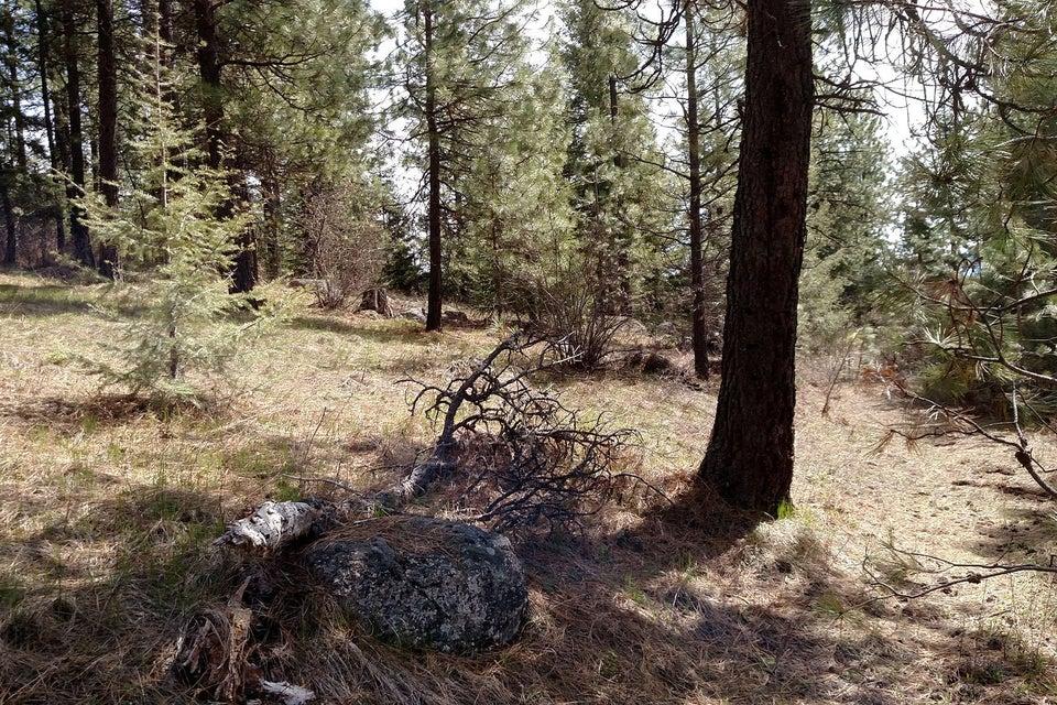 28 Acre Elk Ridge Rd, Spirit Lake, ID 83869