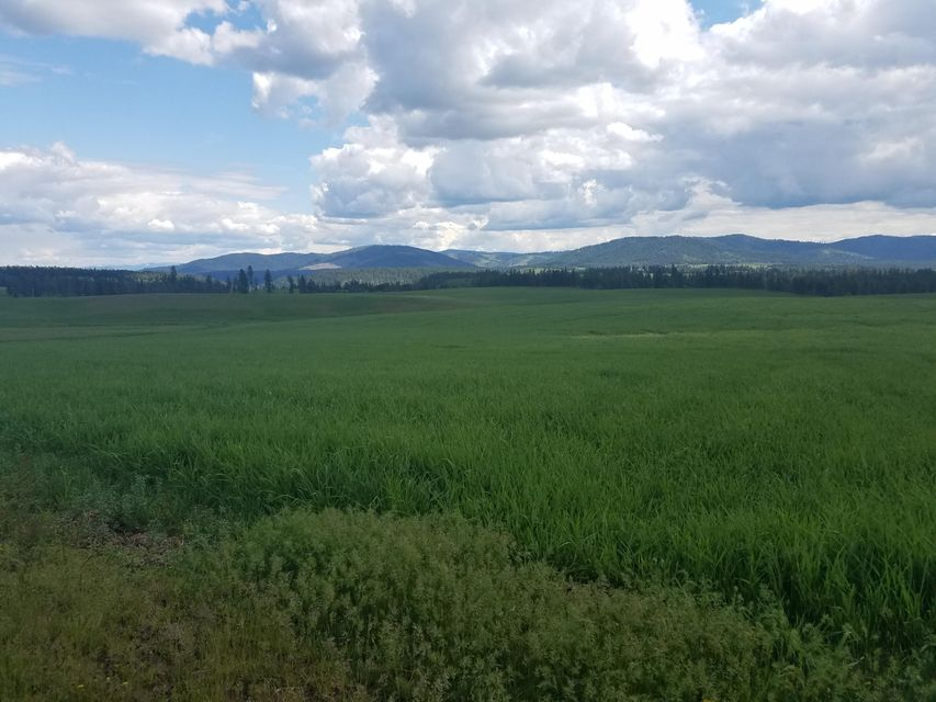 Land for Sale at 4852 W Sunny Slopes Road 4852 W Sunny Slopes Road Worley, Idaho 83876 United States