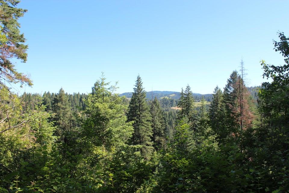 Additional photo for property listing at NKA Vogel Road NKA Vogel Road Worley, Idaho 83876 United States