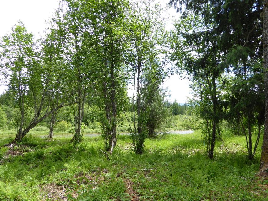 Land for Sale at Lot 4 Clearwater Estates Lot 4 Clearwater Estates Nordman, Idaho 83848 United States