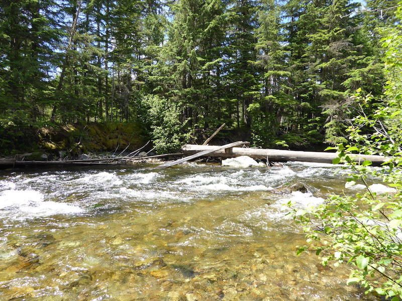 Land for Sale at Lot 3 Clearwater Estates Lot 3 Clearwater Estates Nordman, Idaho 83848 United States