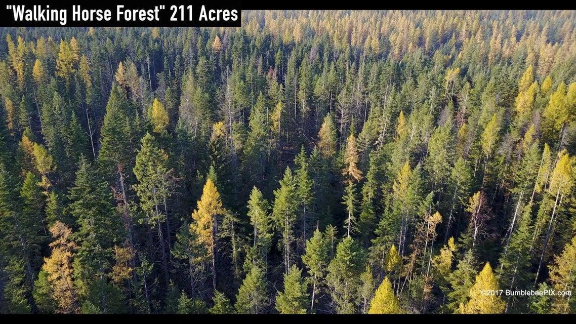 Land for Sale at nna Walking Horse Road nna Walking Horse Road Athol, Idaho 83801 United States