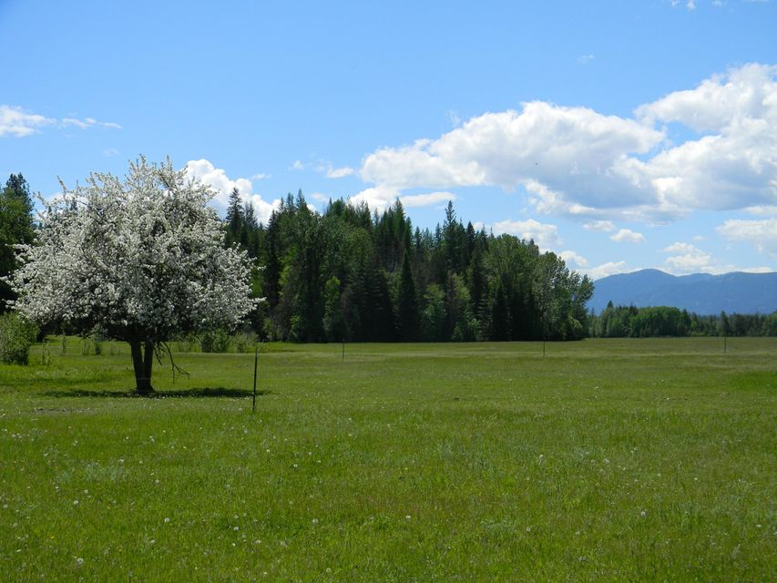 Land for Sale at 1768 Grouse Creek Road 1768 Grouse Creek Road Sandpoint, Idaho 83864 United States