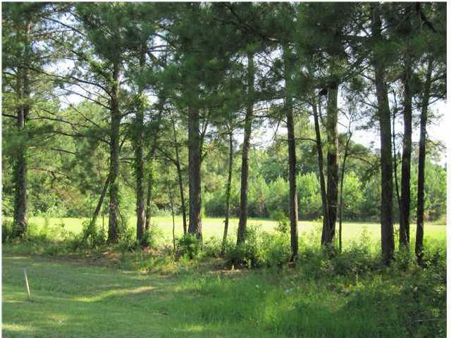 Rifle Range Road Mount Pleasant, SC 29466