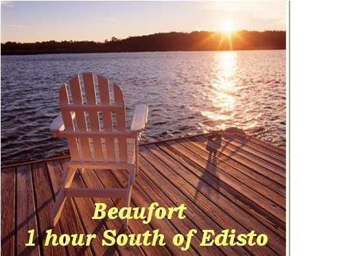 9  Tupelo Trail Edisto Island, SC 29438