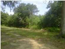 Shadow Pond Road Johns Island, SC 29455