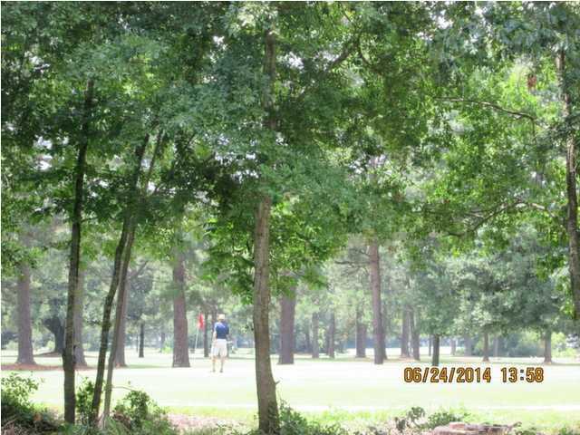 Woodland Shores Annex Homes For Sale - 427 Carol, Charleston, SC - 13