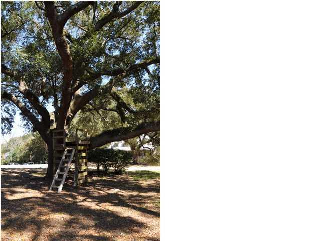 131  Live Oak Drive Mount Pleasant, SC 29464