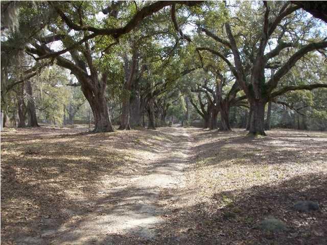 6200  Encampment Plantation Drive Adams Run, SC 29426