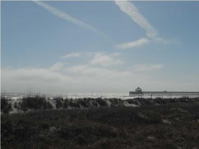 305 E Arctic Avenue Folly Beach, SC 29439