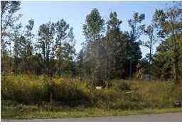 Thurgood Road Goose Creek, SC 29445