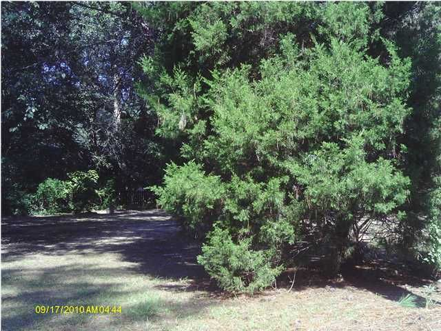 215  Molasses Lane Mount Pleasant, SC 29464