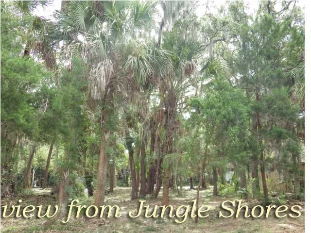 211  Jungle Road Edisto Beach, SC 29438