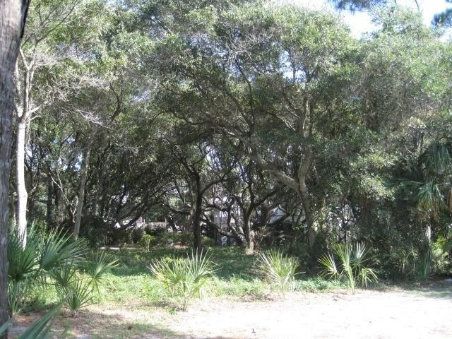 Folly Beach Lots For Sale - 1502 Ashley, Folly Beach, SC - 11