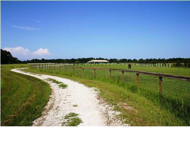 2325  Leadenwah Drive Wadmalaw Island, SC 29487
