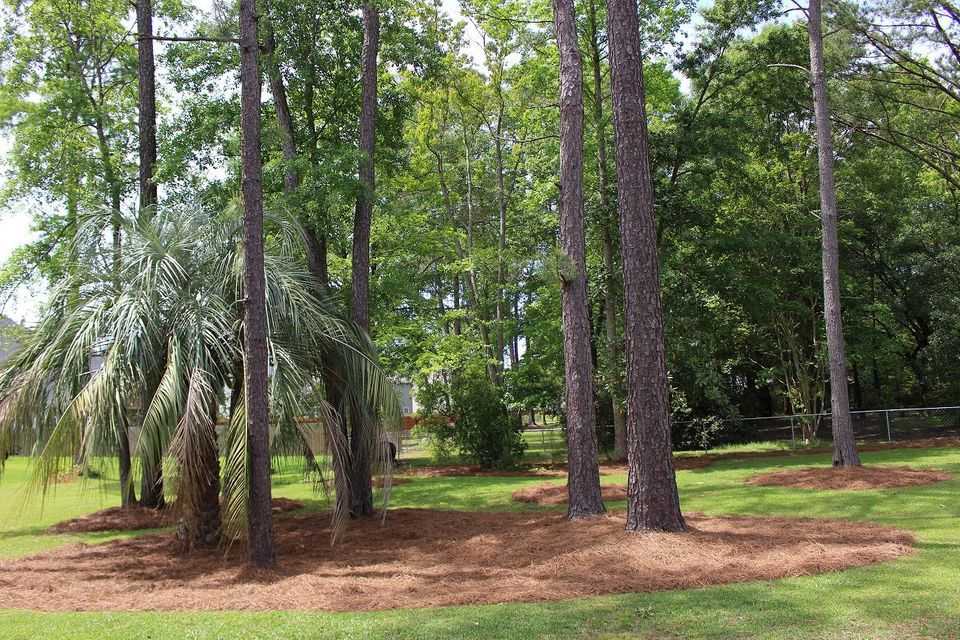 247  Withers Lane Ladson, SC 29456
