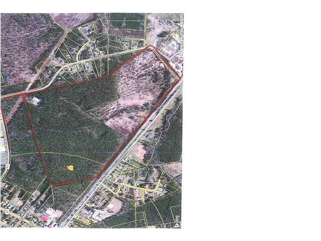 449  Campbell Thickett Ridgeville, SC 29472
