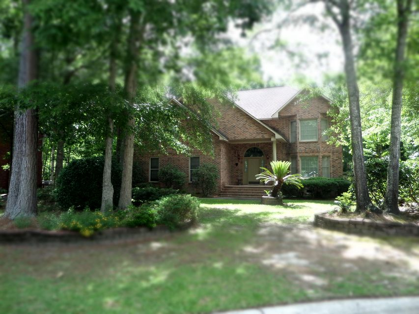133  Delaney Circle Summerville, SC 29485