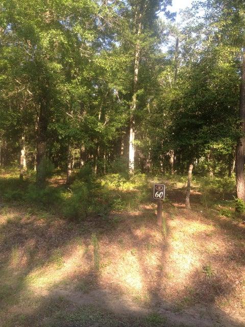 Pepper Grass Trail Ravenel, SC 29470