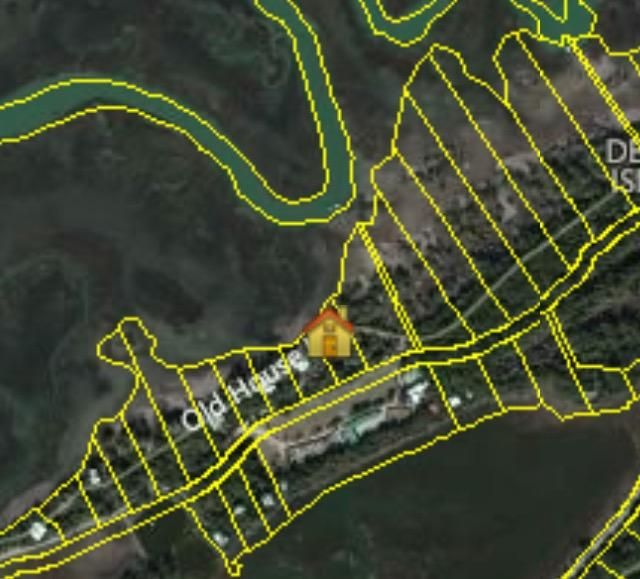 266  Old House Lane Dewees Island, SC 29451