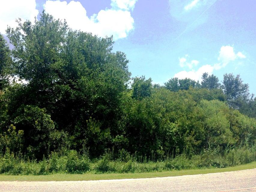 1551  Periwinkle Drive Mount Pleasant, SC 29466