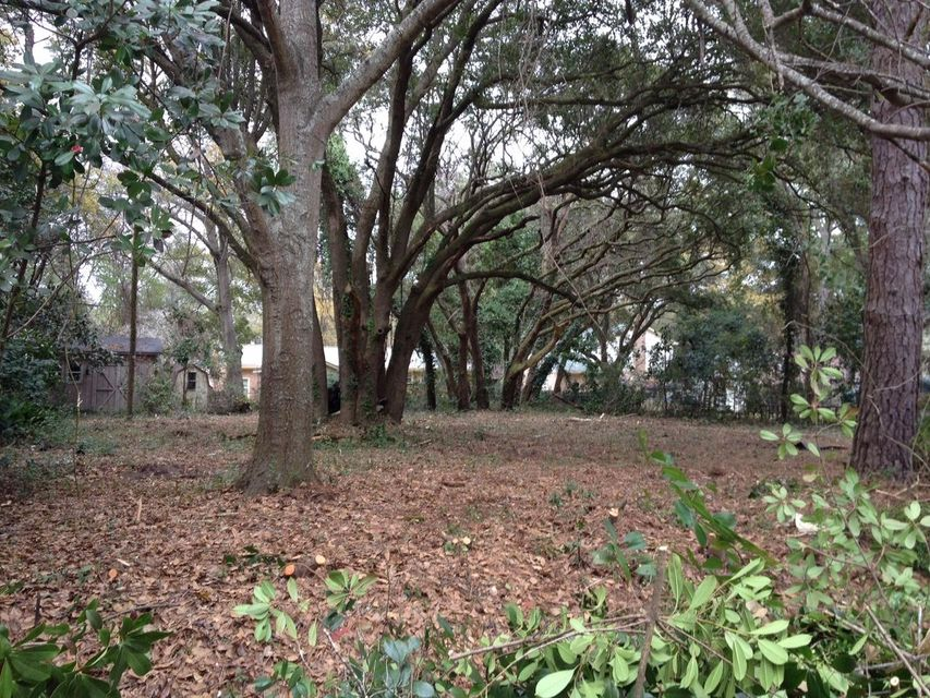 Leafwood Drive James Island, SC 29412