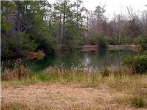 2888  Murraywood Road Johns Island, SC 29455