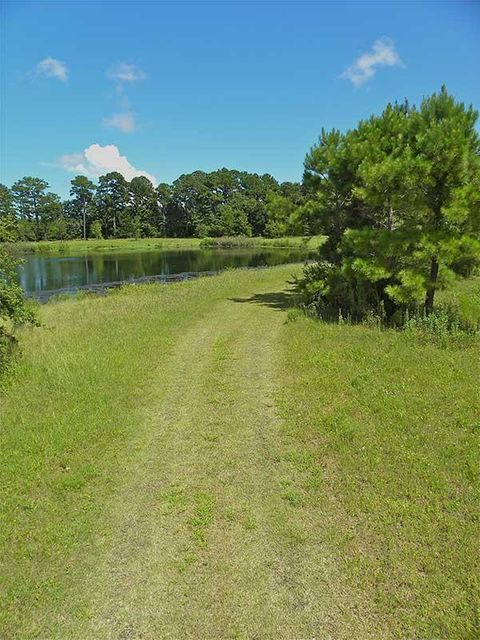The Farms at Brick House Plantation Lots For Sale - 0 River, Johns Island, SC - 4