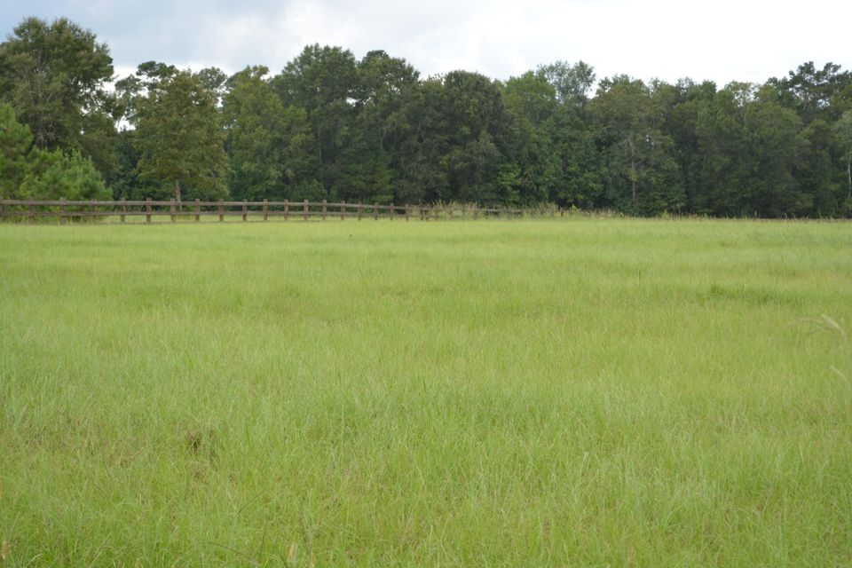 105  Bradley Pasture Way Ravenel, SC 29470