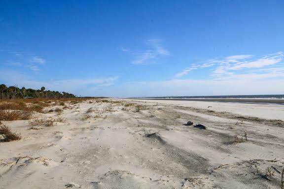 291  Pelican Flight Drive Dewees Island, SC 29451