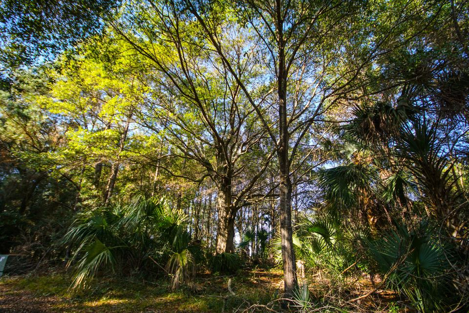 Lot 107  Old House Lane Dewees Island, SC 29451