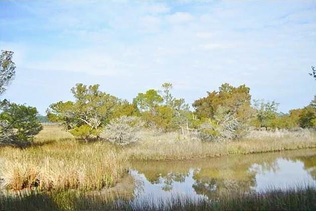 89  Otter Island Kiawah Island, SC 29455