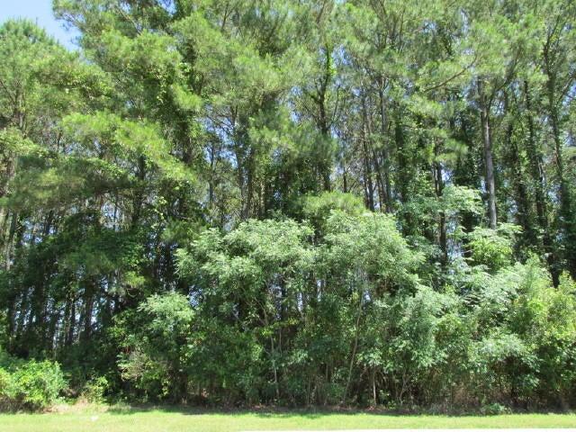 4895  Sound View Drive Mount Pleasant, SC 29466