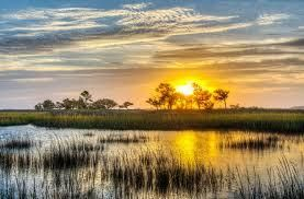 Kiawah Island Lots For Sale - 248 Eagle Point, Johns Island, SC - 11