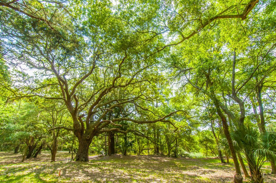 Folly Beach Lots For Sale - 1 Woody Ln, Folly Beach, SC - 23