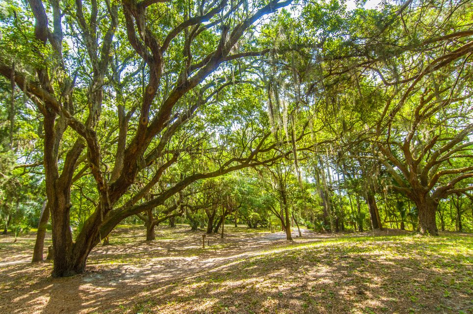 Folly Beach Lots For Sale - 1 Woody Ln, Folly Beach, SC - 56