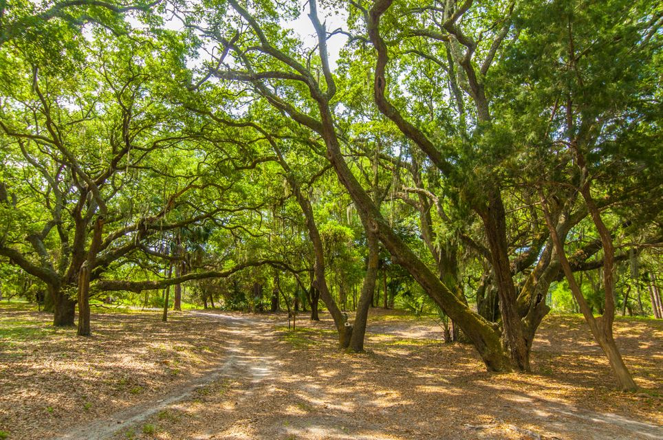 Folly Beach Lots For Sale - 1 Woody Ln, Folly Beach, SC - 33