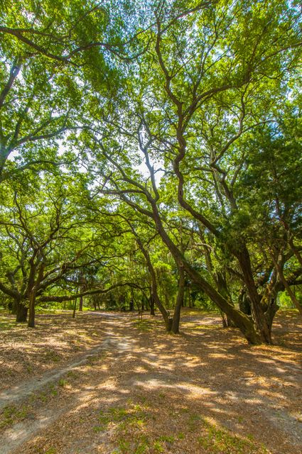 Folly Beach Lots For Sale - 1 Woody Ln, Folly Beach, SC - 32