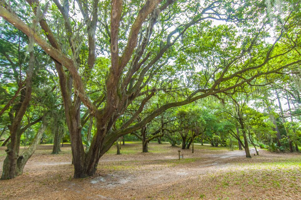 Folly Beach Lots For Sale - 1 Woody Ln, Folly Beach, SC - 28