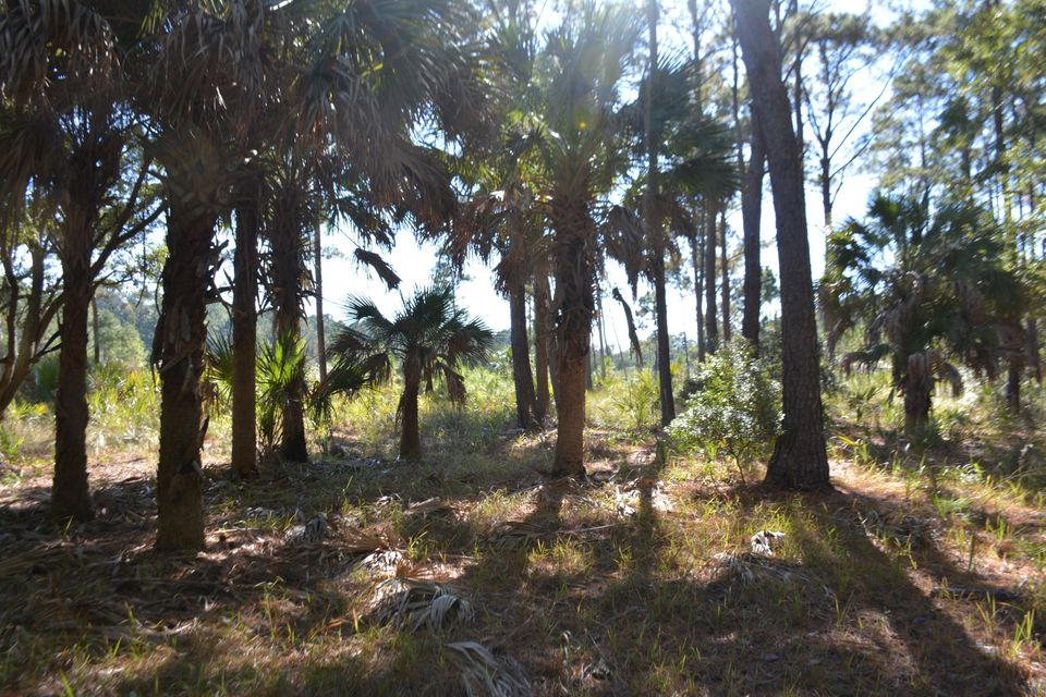 27 B  Cotton Field Lane Edisto Island, SC 29438