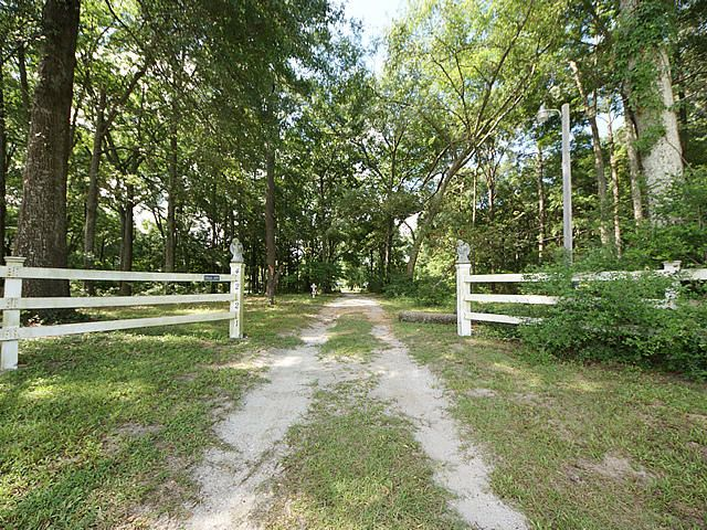 Geraty Homes For Sale - 4221 Highway 165, Meggett, SC - 28