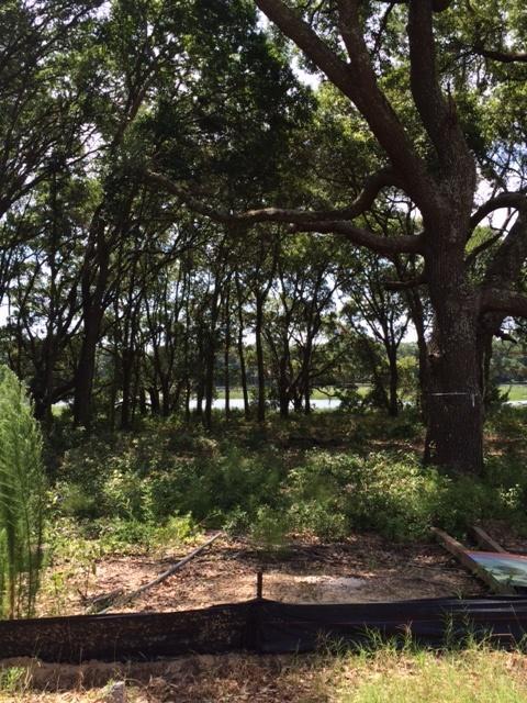 1129  Hills Plantation Drive Charleston, SC 29412